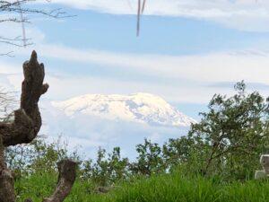 Neuschnee-am-Kilimanjaro